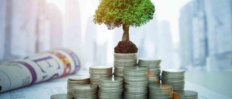 Куда инвестировать деньги в кризис
